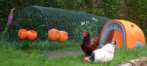 Eglu Classic Chicken Coop.jpg