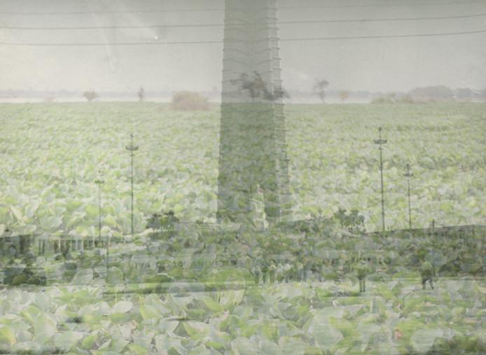 Scan-99.jpg