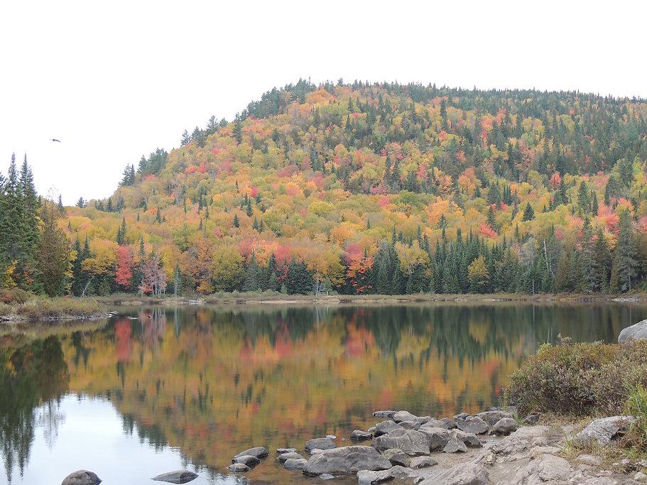 Lac miroir automne.jpg