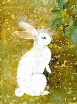 Le lapin d'Uemura