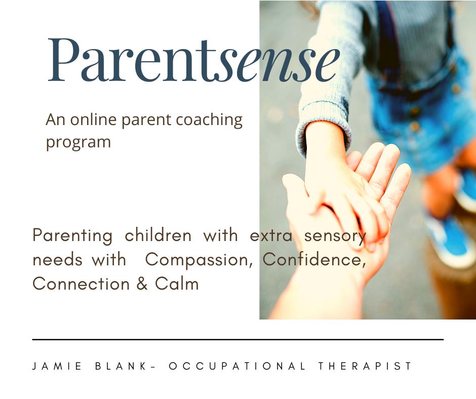 Parent Sense (6 week program)