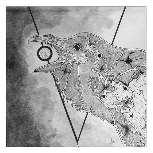 12x12 Raven Print