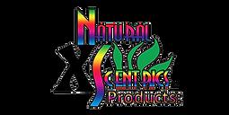 nx logo.png