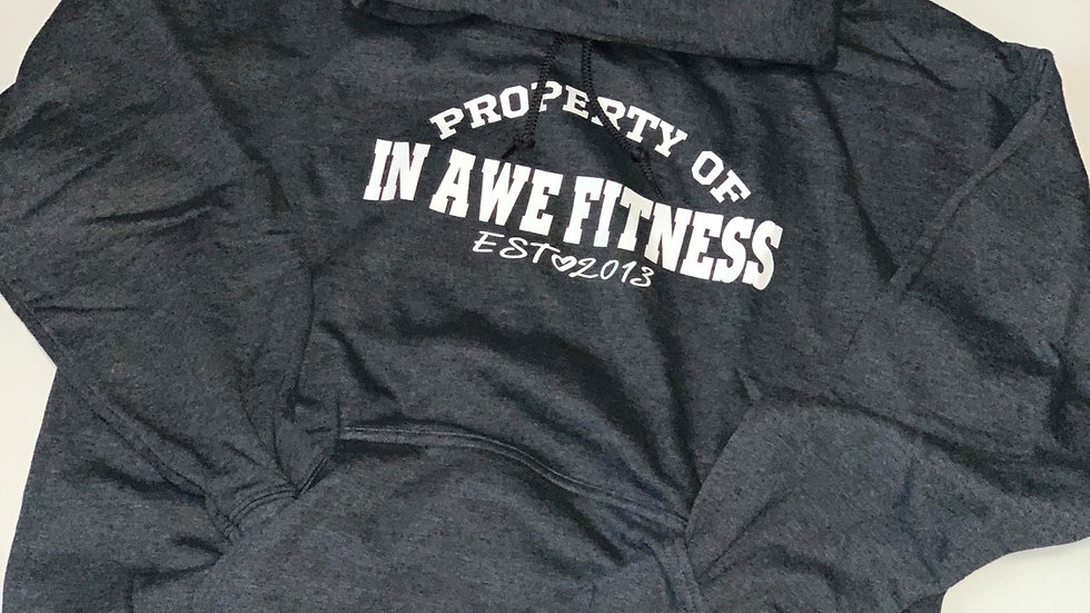 CHARCOAL GRAY PROPERTY OF HOODIE