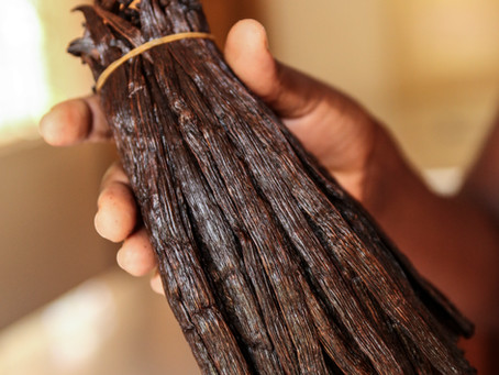 Rural Economic Development Through Vanilla Farming