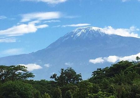 Mount Kilimanjaro, the home of Kilimanjaro Vanilla