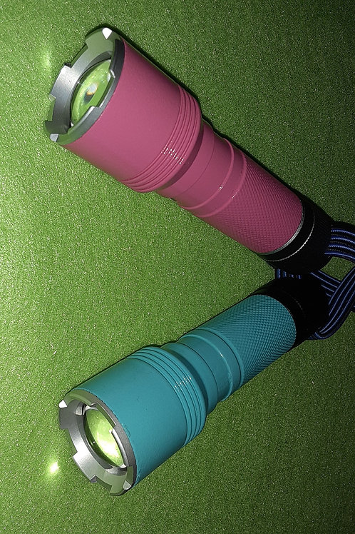 TFL-1: Teal and Pink Forest Flashlights with Compass