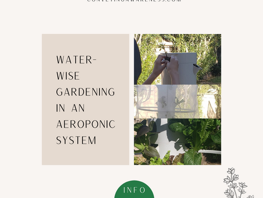 Water-wise Gardening in an Aeroponic System