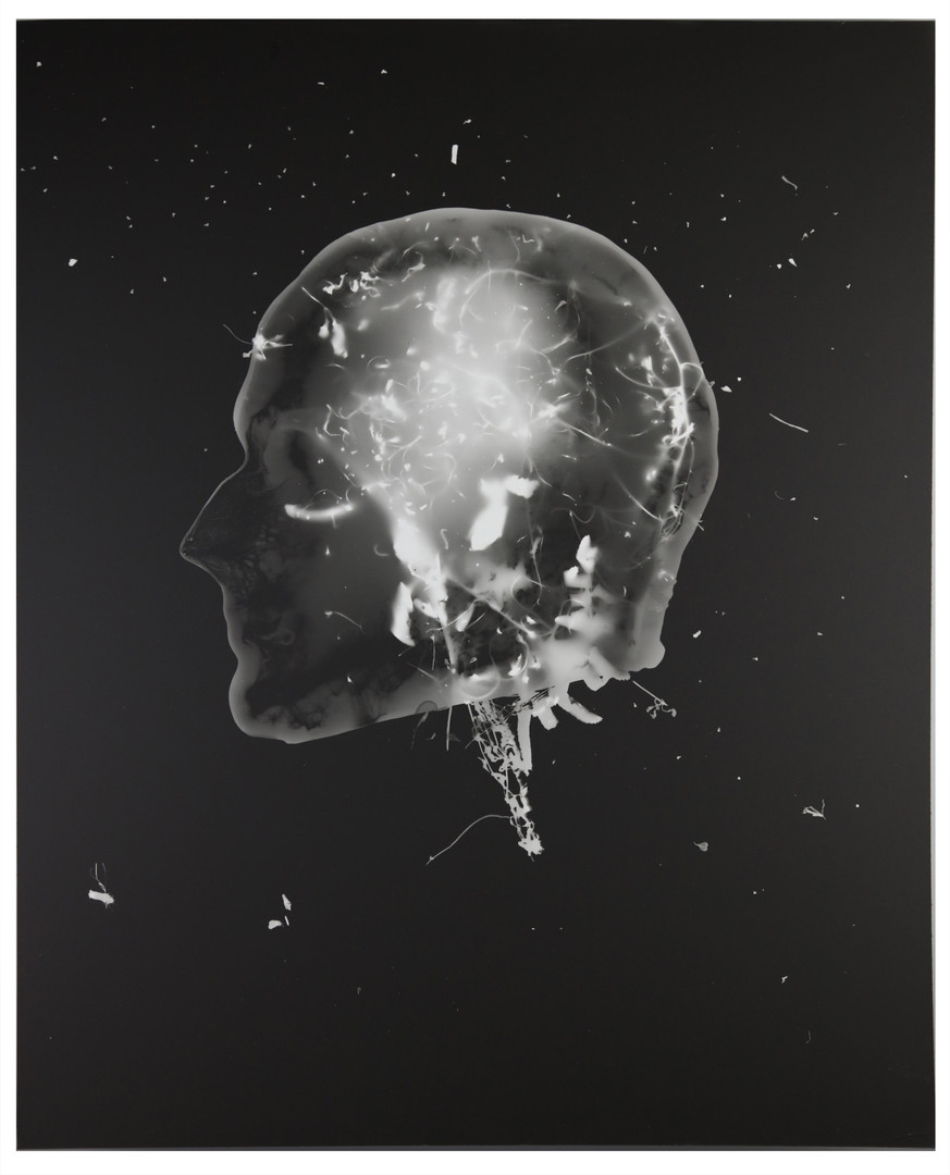 Frozen Memories 2, Photogram 2017