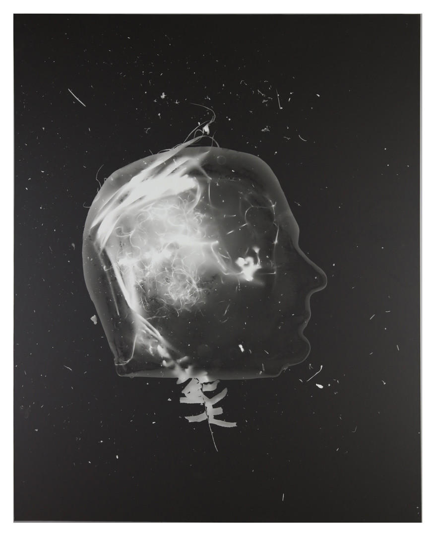 Frozen Memories 1, Photogram 2017