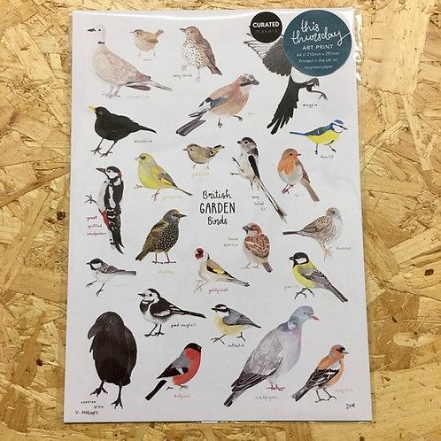 A4 British Garden Birds Print