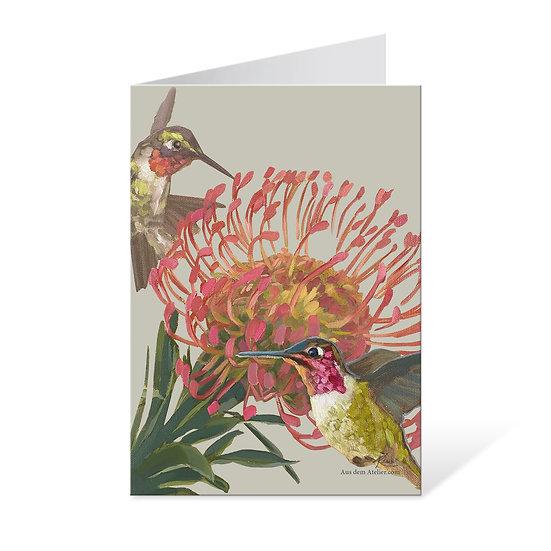 Klappkarte mit Kuvert, Kolibri und Nadelkissenblume