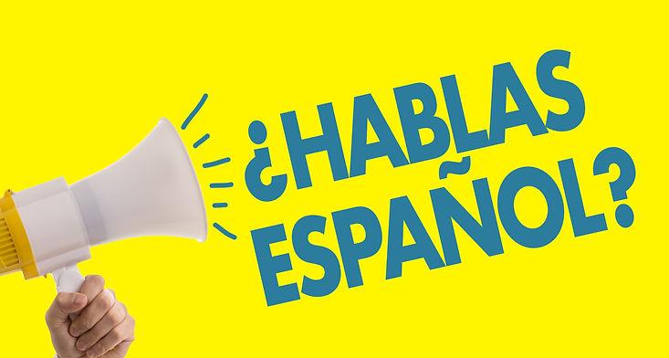 Do You Speak Spanish? (in Spanish).jpg