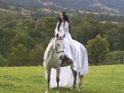 Bride on a Bitless Horse