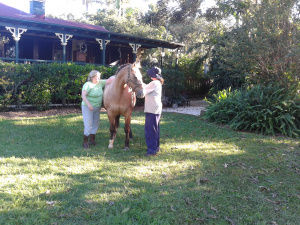 2 womwn standing with a horse in the garden