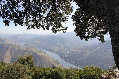 Douro Valley, Lamego, Viseu, Portugal | Sleep-Retreat - Schlafhotel | Anders reisen, alternative Reisen, Reisetrends, außergewöhnliche Reisen, exklusive Reisen
