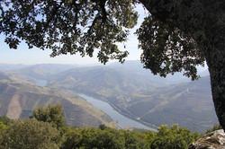 Sleep-Retreat Six Senses Douro Valley