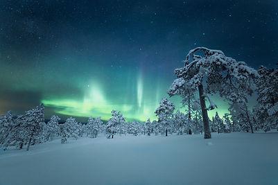 Arctic-Cabin - maria-vojtovicova-SPvJPDX