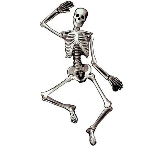 Decorazione scheletro articolato