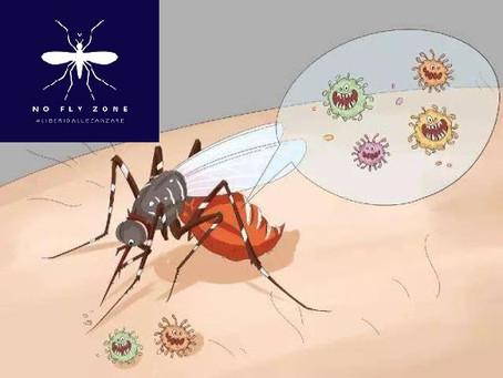 Come fanno a trasmettere malattie ?