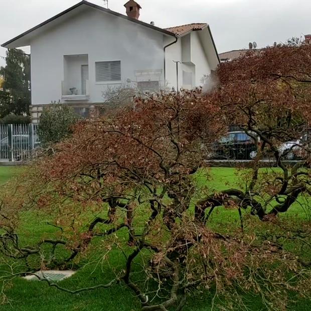 Liberidallezanzare Bergamo.mp4