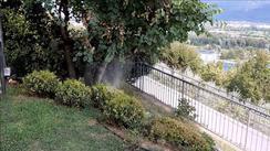 Impianto-nebulizzazione-anti-zanzare-lov