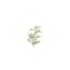 Agama - Logo Variations (1).png