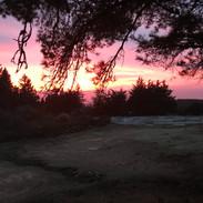 SUNSET, PASTURE
