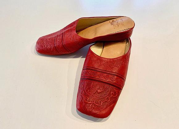 Red Camel Slides