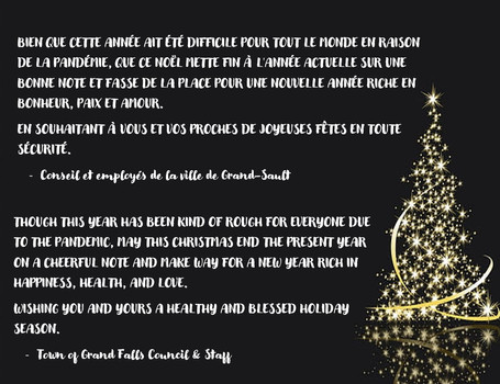 Voeux de Noël / Christmas Greetings