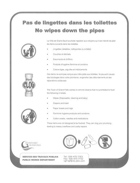 Pas de lingettes dans les toilettes / No wipes down the pipes