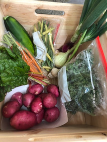 7/17/19 First CSA Boxes