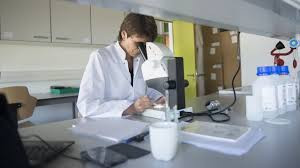 Domobios moves from research to production and tackles bedbugs