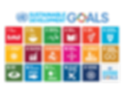 787px-Sustainable_Development_Goals_char