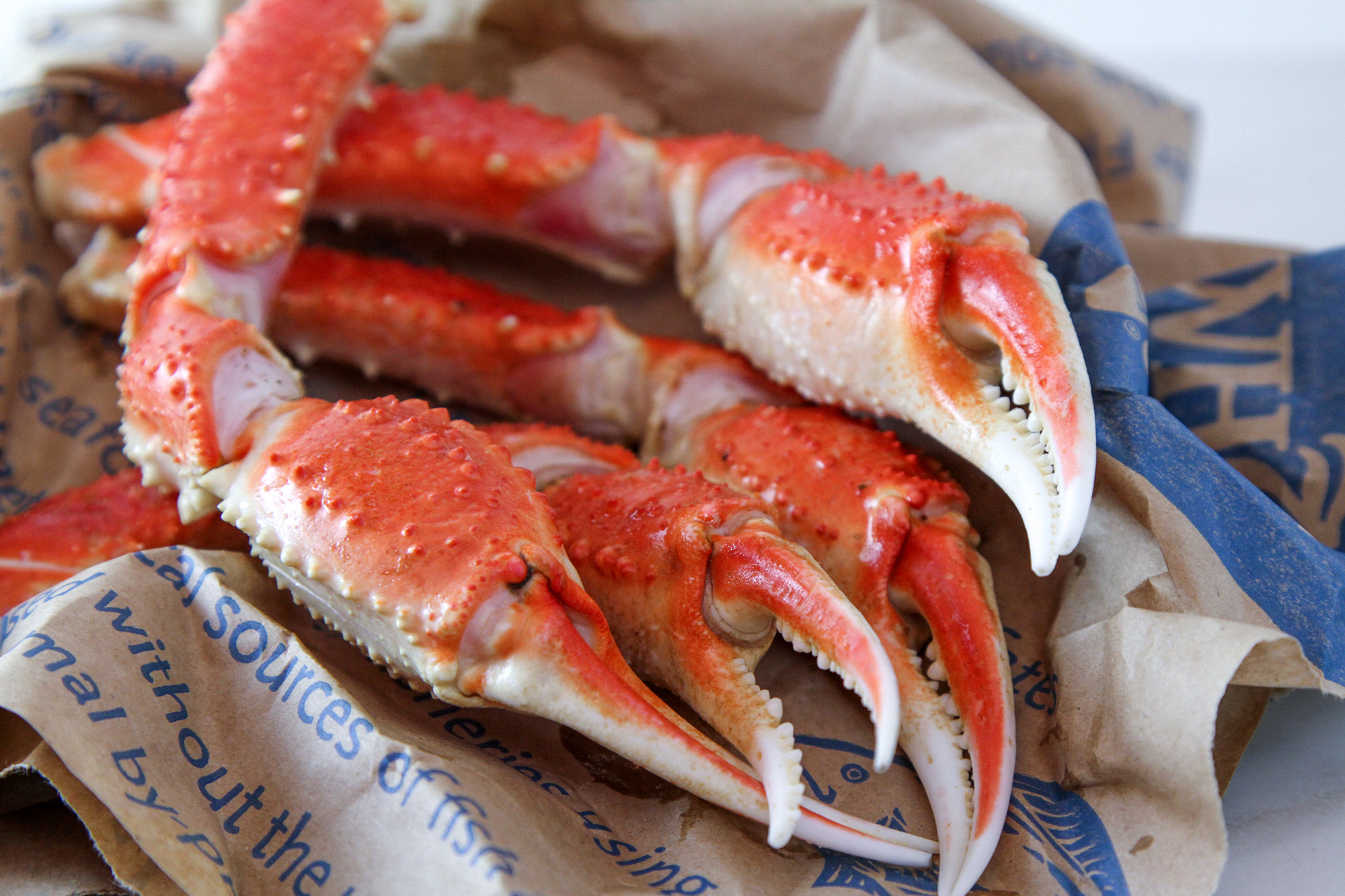 Snow-Crab-Claws