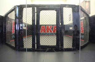 American Kickboxing Association Cage