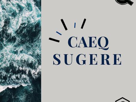 [30/10] CAEQ Sugere