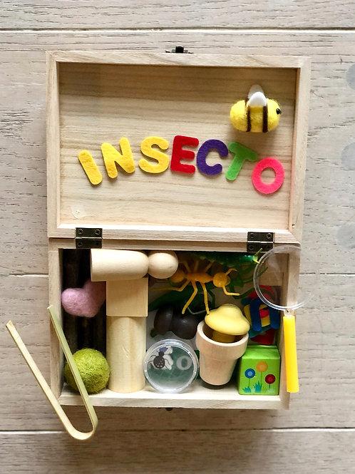 Spanish Bug Box