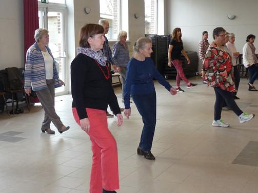 2016 Danse en ligne 014.JPG