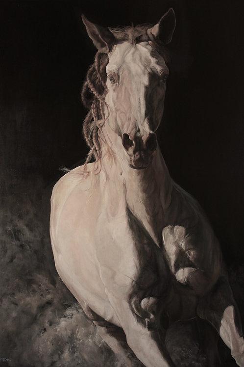 19043-JAIPUR-huile sur toile de lin-114x162cm