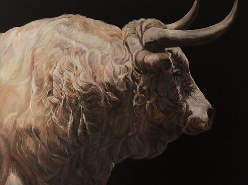 15038-TORO BEIGE DE PROFIL huile sur toile de lin 146x114cm