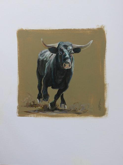 20024-SORTIE DE TORIL-huile sur contrecollé-vignette 20x20cm