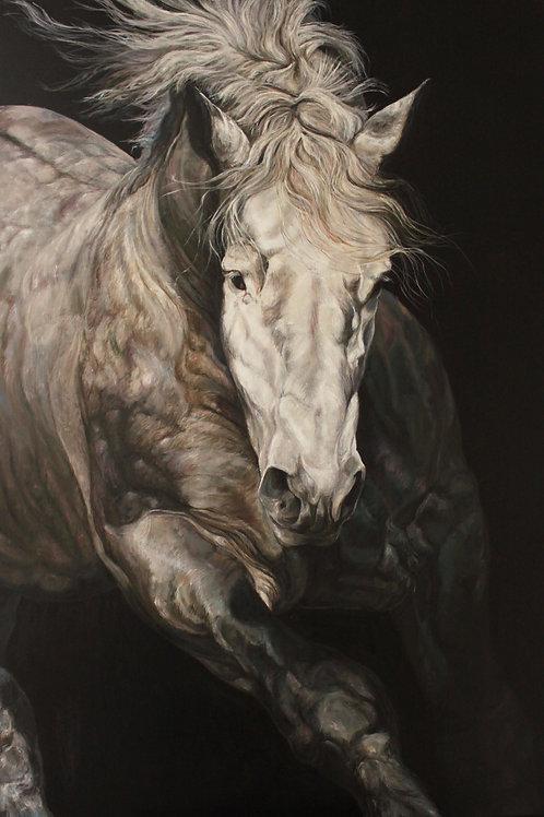 16033-PERCHERON DE FACE-huile sur toile de lin-114x162cm