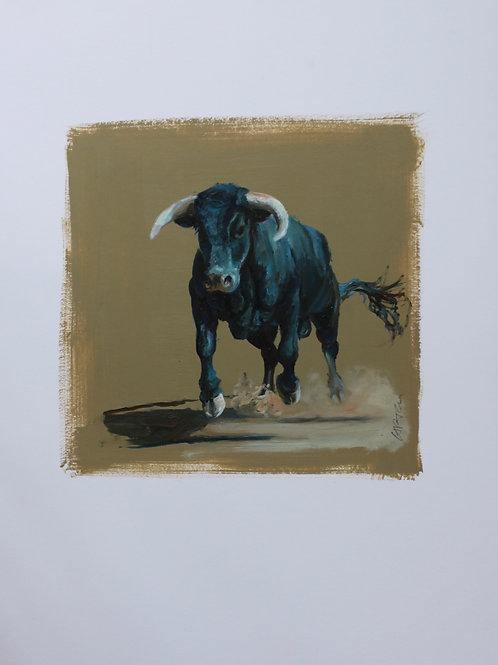 20028-TORO-huile sur contrecollé-vignette 20x20 cm