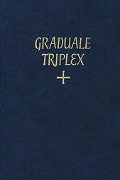 triplex.jpg