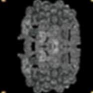 20150116124910_coro.png