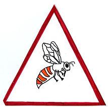 pericolo_insetti.jpg
