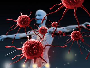 Como esta o seu sistema imunológico? Saiba a importância de mantê-lo sempre reforçado