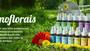 CROMO FLORAIS: O que são? E quais os seus benefícios