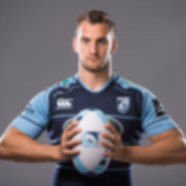 Sam Warburton, Cardiff Blues
